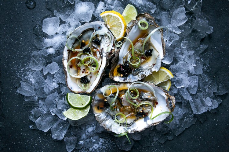 Oysters 8