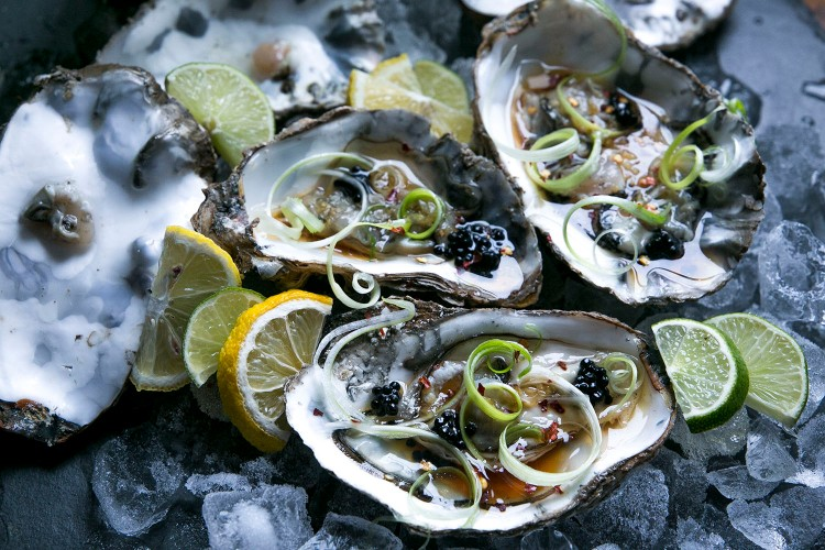 Oysters 9